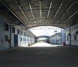 main canopy